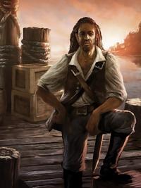 Пират Raven's Cry
