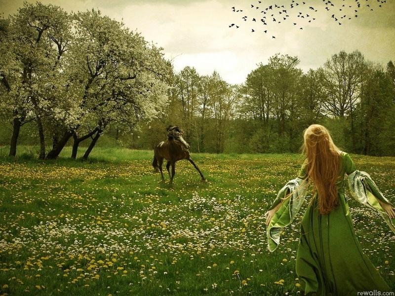 Скачать обои фантастика, девушка, конь для рабочего стола совершенно