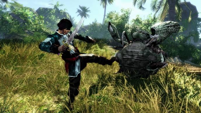 Скриншот игры Risen 2: Dark Waters